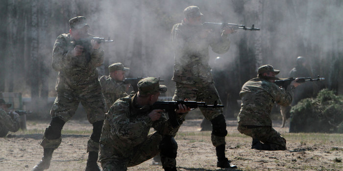 Порошенко натравил правозащитников на Нацгвардию и частные армии