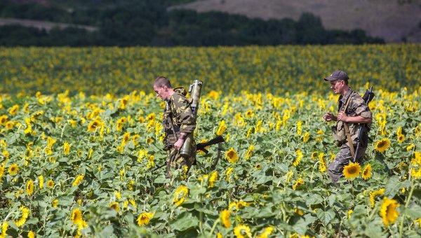 Ополченцы помогают селянам разминировать поля для уборки урожая