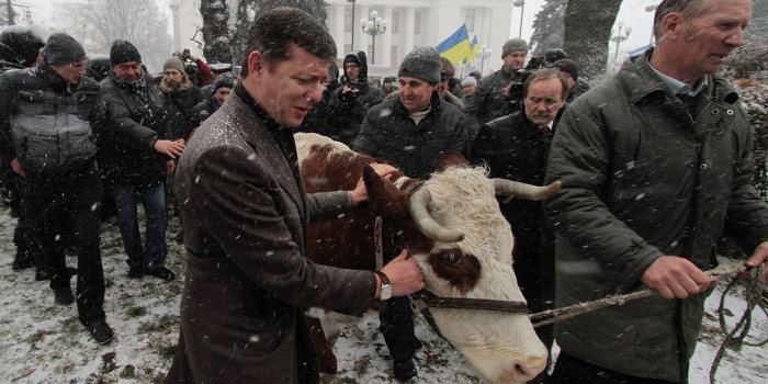На Украине запретят мясо-молочные продукты домашнего производства