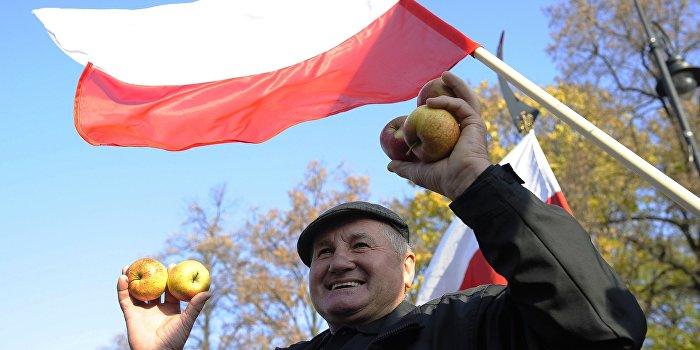 Польские смотрящие