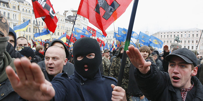 Долгов: Запад должен остановить украинский неонацизм