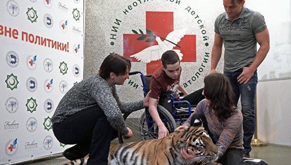 Братья Запашные с тигрицей посетили Ваню Воронова, искалеченного в Донбассе