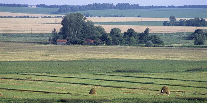 Zeit: У инвесторов пропал интерес к украинскому сельскому хозяйству