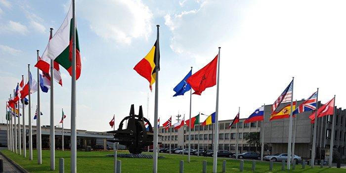 НАТО обвиняет Минобороны Украины в задержке с реформами