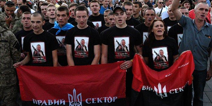 «Правый сектор» посвятил нецензурный клип Порошенко