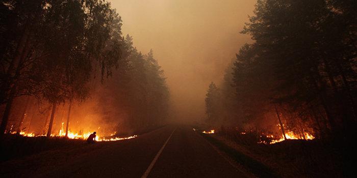 В масштабных пожарах на Украине нашли политическую составляющую