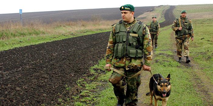 Украинский пограничник: Я бы на Киев пошел. Этого Порошенко надо убрать