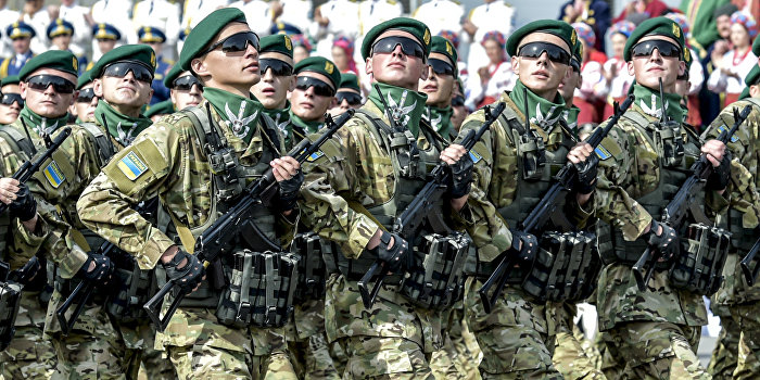 Полторак: Армия Украины за год выросла вдвое