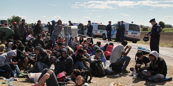 В Венгрии арестовано более девяти тысяч мигрантов