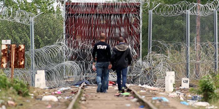 Западная Европа идет за США, как крысы за дудочкой, на свою погибель