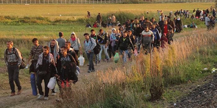 Французы издали путеводитель для беженцев