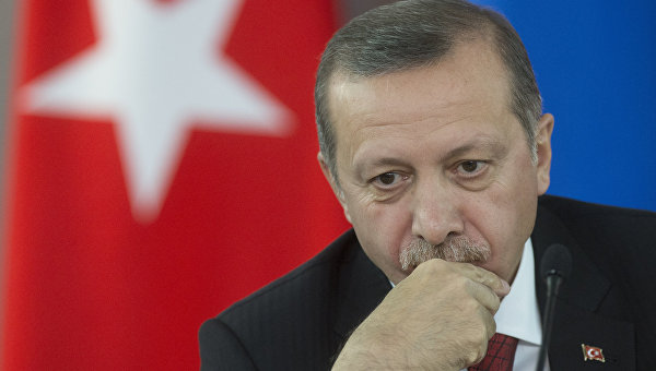 В Госдуме Эрдогану предложили последовать вслед за Саакашвили на Украину