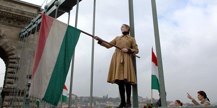 114 городов и сел Закарпатья хотят образовать отдельный венгерский регион