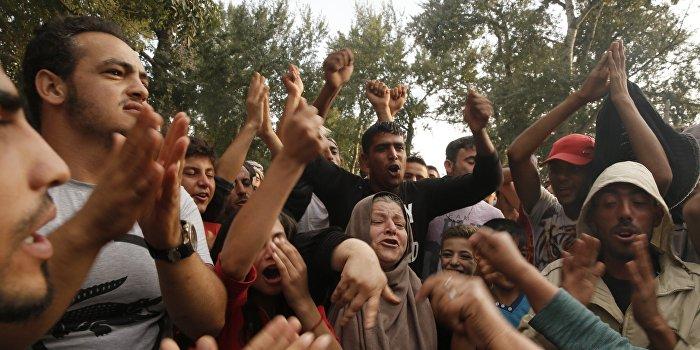 Депутат: Сирийские беженцы на Киевщине - это катастрофа