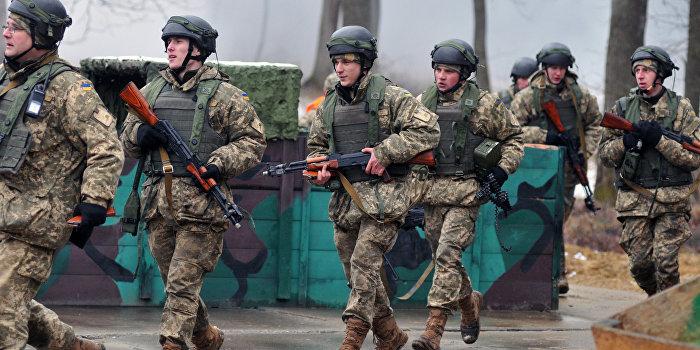 Киев направил под Мариуполь спецназ против националистических батальонов
