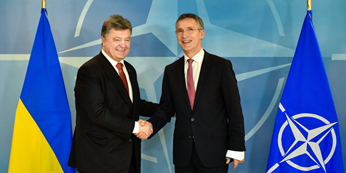 НАТО ждет Украину