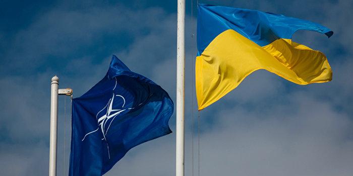 НАТО и ВСУ подписали соглашение о сотрудничестве