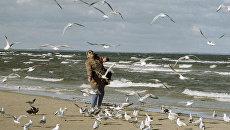 В Тернополе возле озера живодеры отравили птиц