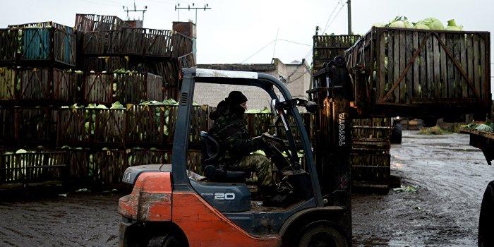 Украина поставила «абсолютный антирекорд» по экспорту сельхозпродукции в ЕС