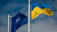 Загороднюк рассказал, чего намерен добиться для Украины в рамках сотрудничества с НАТО