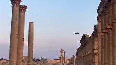 Андрей Манчук: Сирия против США - кто же абсолютное зло?