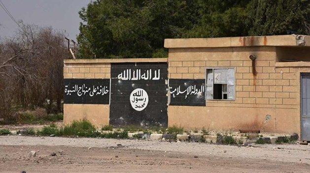 Минобороны РФ: США создают армию из боевиков ИГИЛ