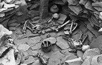 Совместная археологическая экспедиция Киева и ДНР обнаружила поселение бронзового века