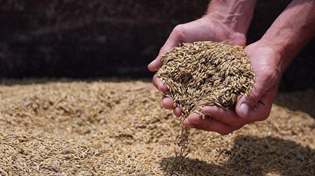 Украина подаст в ВТО иск против России по сельхозпродукции