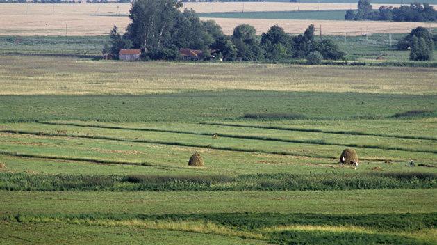 На Украине откроют все данные по сделкам с землей