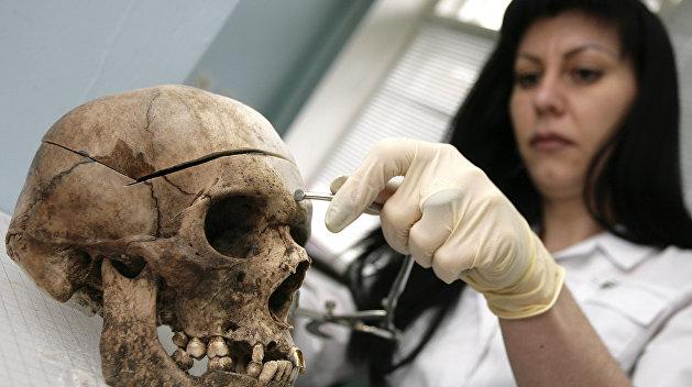 200 черепов в пять ярусов без тел нашли в Черкасской области