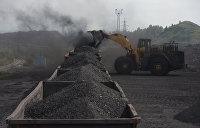 Лукаш: Польша разрушила миф «С Украиной вся Европа» и закупила уголь в Донбассе