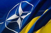 Венгры додавили: Польша предложила перевести заседания Украина-НАТО в неформальные посиделки