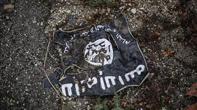 Власти Крыма сообщили о подготовке боевиков ИГИЛ на Украине