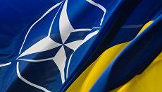 Украинский астролог назвал год, когда Украина войдет в НАТО
