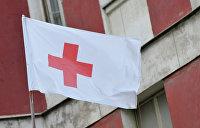 В ЛНР получили от Красного креста более 460 тонн гуманитарной помощи в октябре