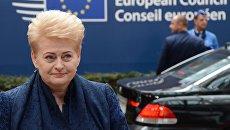 Грибаускайте сулит Украине «долгий путь» в Евросоюз