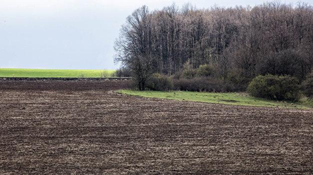 «Ни один нормальный бизнесмен из РФ не будет покупать украинскую землю» - депутат ГД