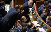 «Батькивщина» проголосовала за закон «О деоккупации Донбасса»