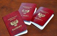 Граждане США, Германии и Италии предпочитают паспорта ДНР
