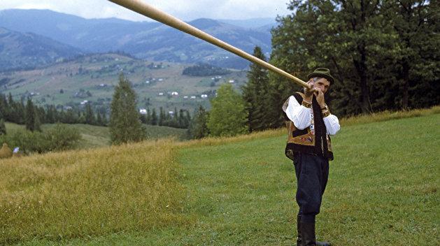 В Закарпатье снесли частные вышки, с которых контрабандисты следили за пограничниками