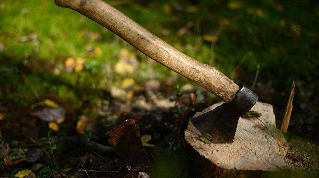 «Что за чупакабра это делает». На окраинах Днепра местные жители находят кур без головы