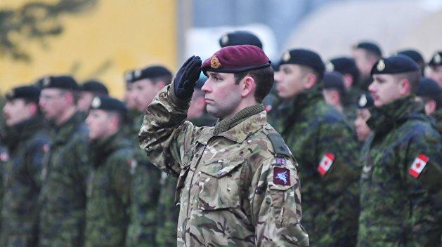 В ДНР готовятся возбудить уголовное дело против офицеров НАТО