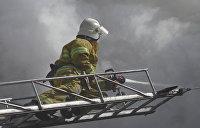 На Львовщине пожар на комбикормовом заводе уничтожил 500 тонн семян рапса