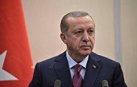 «Эрдоган от поездки в Крым не получит ничего, кроме геморроя» — Мирзаян
