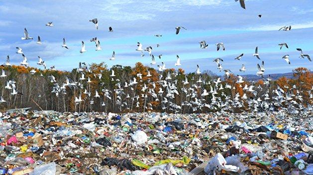 Киевляне потребовали запретить возить львовский мусор в Киев