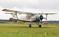 В Полтавской области рухнул самолет Ан-2
