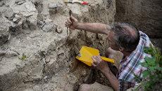 Под Киевом обнаружили древний город времен Мономаха