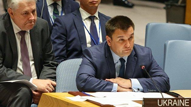 Скубченко: Климкин выставил себя идиотом перед членами ООН
