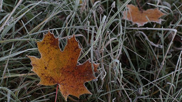 В Ивано-Франковской области 23-летняя девушка замерзла насмерть