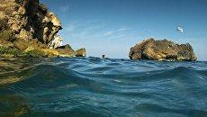 Тонны водорослей сделали Азовское море черным